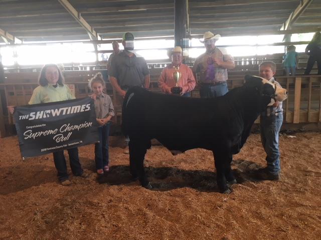 Noah Gunter posing with his Champion Bull
